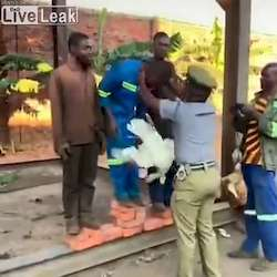 Loterie nationale du Burundi